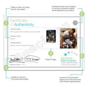 Anthony Joshua Signed Boxing Photo: The Klitschko Uppercut